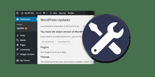 Web Hosting & Maintenance